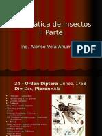 Sitemática de Insectos II parte1.ppt