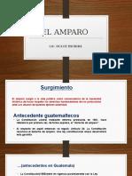 EL AMPARO Presentacion 5