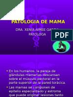 MAMA I