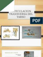 Articulacion Transversa Del Tarso