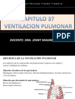 Resumo sistema respiratorio