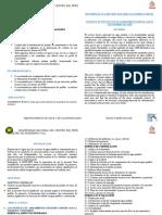 RESUMEN SNIP - DFLORES.docx