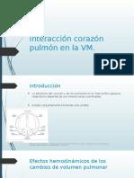 relación corazon pulmon en VM