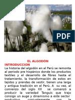 ALGODON PERUANO