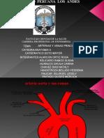 Arterias y Venas Principales... KvO!!!