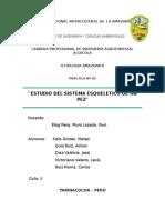 INFORME_DE_PRACTICA_DE_ICTIOLOGIA_N°_05[1].docx