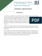 Informe Lab. Fluidostrabajo