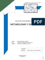 1°-Guía-Actividades-8-Metabolismo-y-enzimas