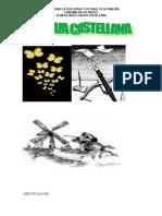 Plan de Area de Lengua Castellana 2.016