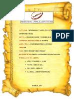 TAREA-COLABORATIVA-I_AUD.-GUBERNAMENTAL.pdf