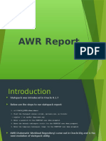 AWR Report