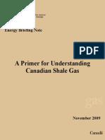 Shale Gas Primer