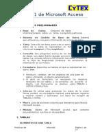 Parctica Access 2007 - Cytex