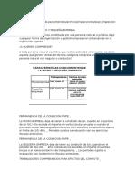 DEFINICION-DE-MICRO-Y-PEQUEÑA-EMPRESA.docx