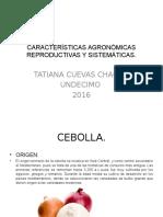 Características Agronómicas Reproductivas y Sistemáticas