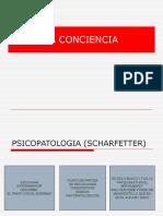 psicopatologia-conciencia