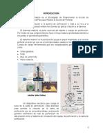 exposicion de IPP.docx