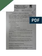 Consulta n. 2