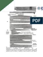 Consulta n.-3.docx