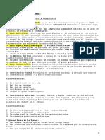 constitucional completo siglo 21.doc