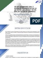SUSTENTACION CRA 24 CON CALLES 23 Y 45.pptx