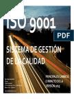 ISO 9001 Version 2015 Principales Cambios Clase 1