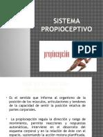 Sistema Propioceptivo (2)