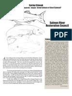 Salmon River Restoration Council Newsletter, Summer 2006