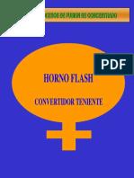 Horno Flash y CT