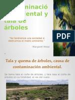 Contaminación Ambiental y Tala de Árboles