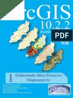 ARCGIS 10.2.2 Passo a Passo_ Elaborando Meu Primeiro Mapeamento - Volume 1