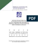 Estudio Etnobotánico de Eysenhardtia Polystachya (Ort) Sarg. en Una Comunidad Del Municipio de Zempoala, Hidalgo y Evaluación Del Efecto Diurético en Rata