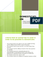 Domestication Sheep