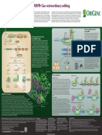 CRISPR–Cas Extraordinary Editing Posters