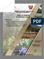 PIP Creación.pdf