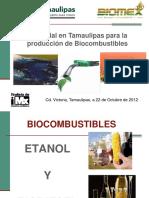 2-Produccion-de-biocombustibles-en-Tamaulipas.pdf