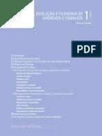 Origem Evolução e Filogenia de Chordata e Craniata