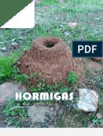 Hormigas curiosas