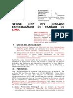 DEMANDA ACTUAL 30% (1) (1).doc