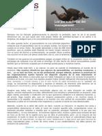 Los Paracaidistas Del Management - 1 Junio 2016