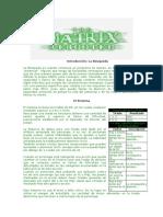 Matrix Reiniciada - Reglas