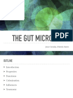 presentation - the gut microbiome