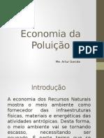 Economia Da Poluição