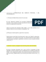 Lectura Calificada Principios Fundamentales Del Derecho Procesal y Del Procedimiento
