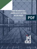 MONITORAMENTO DAS AUDIÊNCIAS DE CUSTÓDIA EM SÃO PAULO pelo Instituto de Defesa do Direito de Defesa