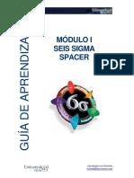 Guia I Seis Sigma Introduccion
