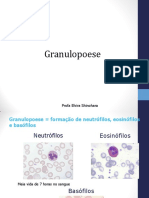 Granulopoese Clinica Em Pratica
