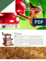 Brochure Promocional Español