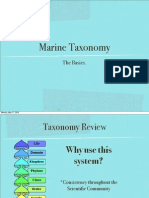 Marine Taxonomy Revised PDF