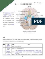 附錄一 十二對腦神經介紹